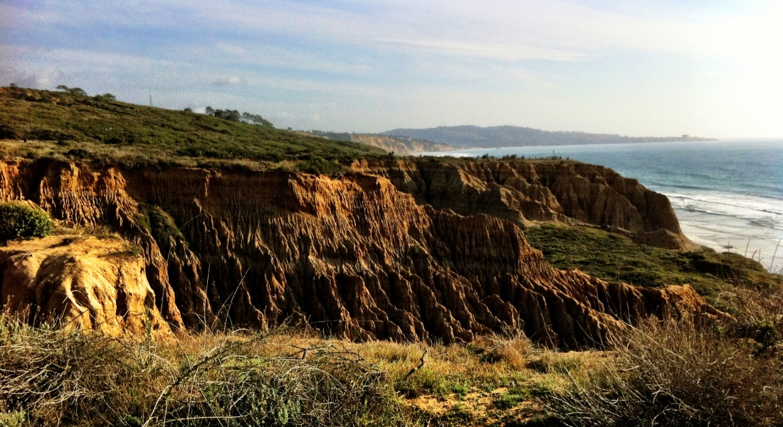 Torrey Pines Cliffs 2