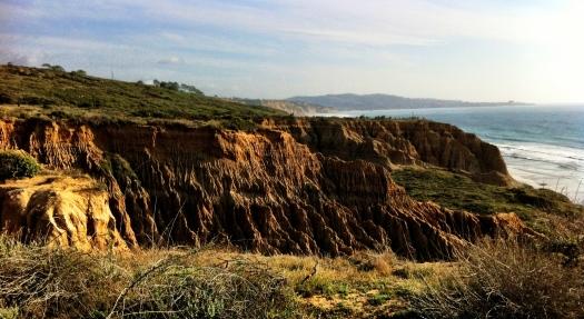 Torrey Pines Cliffs 2